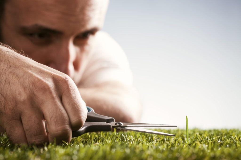 Педант срезает траву