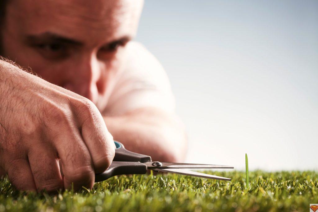 Перфекционист срезает траву