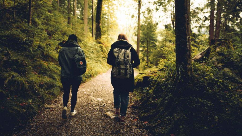 Двое людей идут по тропинке в лесу