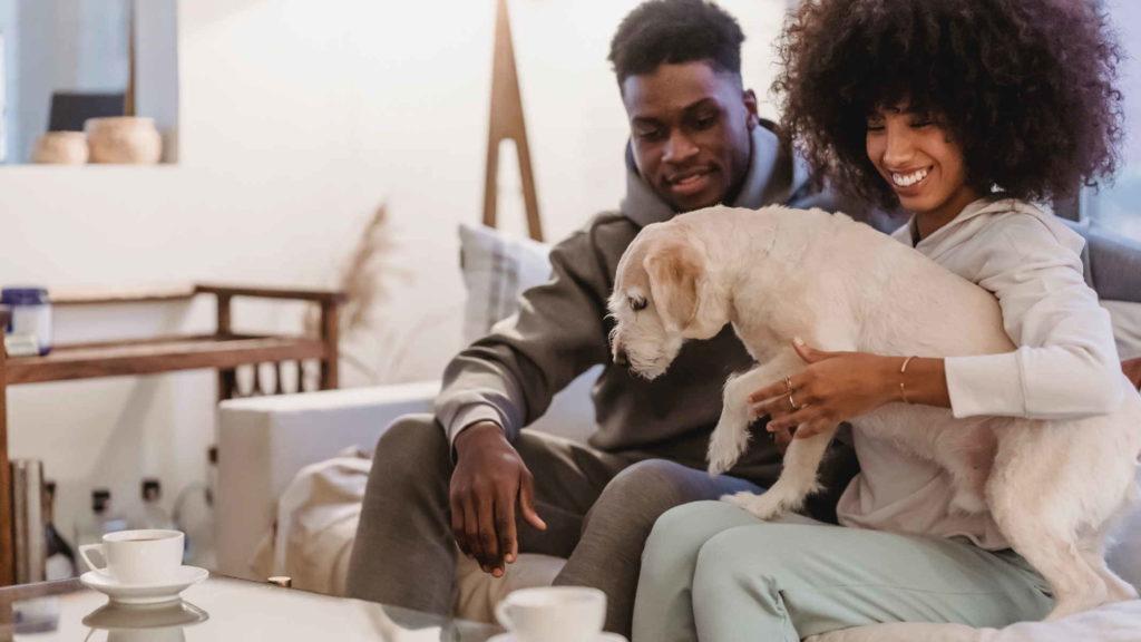 Мужчина и женщина отдыхают вместе с собакой