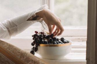 Женская рука на фоне окна держит виноградную лозу