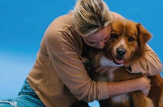 Девушка обнимает рыжую собаку