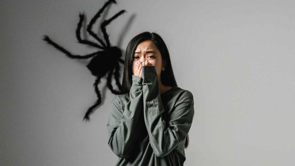 Девочка боится большого паука на стене